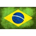 Stockfahne 30 x 40cm Brasilien