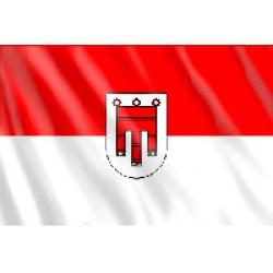Fahne Voralberg 150 x 90  (Österreich Bundesland)