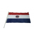Stockfahne 30 x 40cm Paraguay