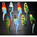 Dekoset Papagaien, bunt 8 tlg. (31cm)