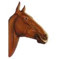 Dekofigur - Pferdekopf