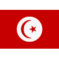 Fahne Tunesien 150 x 90 cm