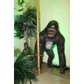 Gorilla Affe Figur Lebensgroß Länge ca. 100 cm Höhe ca. 135 cm Tiefe ca. 75 cm